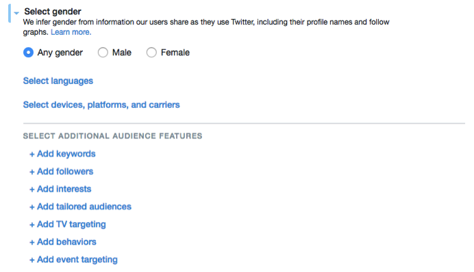 Screenshot of Audience Selection in Twitter Ads