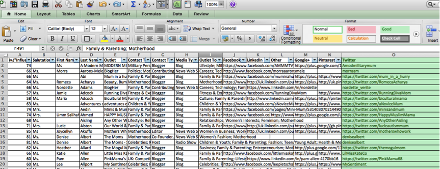 Excel Screenshot of Cision Export